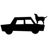 Dog on car detail-adbeelding 4