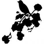 Romantic bird detail-adbeelding 4