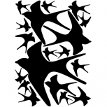 Swallow detail-adbeelding 4